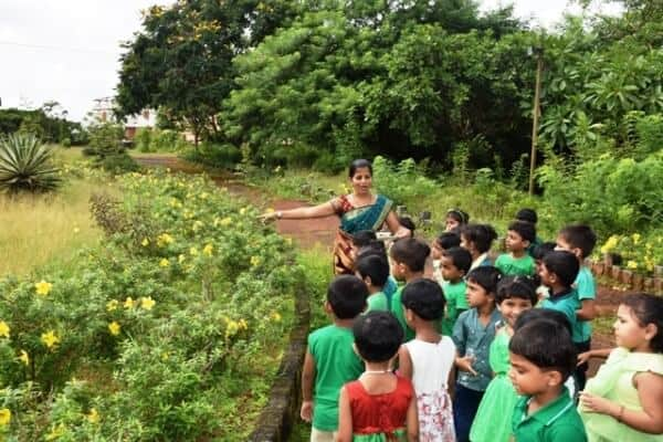 Lush and Green – LKG kids celebrate Nature Day