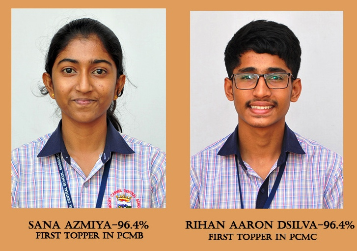 Superb Results in CBSE Class XII Board Exam – 2020