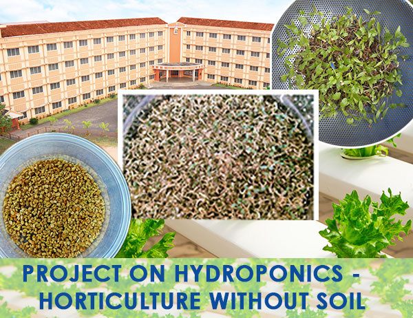 HYDROPONICS – Horticulture without Soil